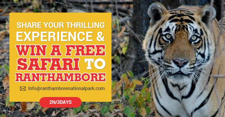 Ranthambore Wildlife Travel