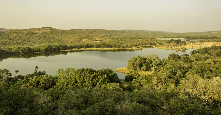 Lake View from Ranthambore Fort