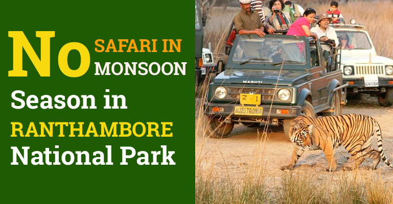 No Monsoon Safari in Ranthambore