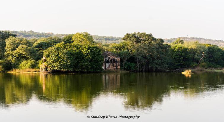 Lake- Ranthambore Park