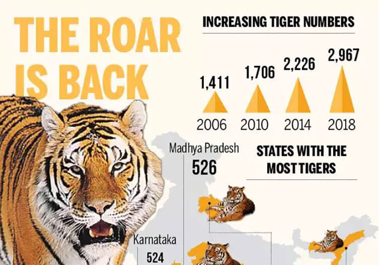 India- Home to 2,967 Tigers: Says Census Revealed on Global Tiger Day | Wildlife News